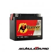Акумулатор BANNER YTX12-BS 12V 10Ah L+